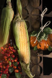 Autumn harvest, corn and berries Royalty Free Stock Photo