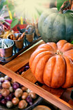 Autumn and harvest in country Stock Images