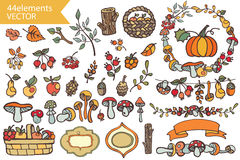 Autumn Harvest.Doodle berries,mushrooms,fruits, Stock Images