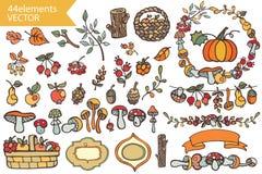 Autumn Harvest.Doodle berries,mushrooms,fruits, Stock Images
