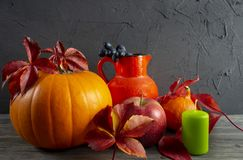 Autumn Harvest en het stilleven van de Vakantiedankzegging royalty-vrije stock foto
