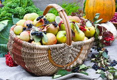 Autumn harvest festival Stock Photo