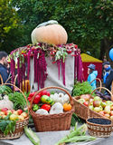 Autumn Harvest Festival Royalty Free Stock Photos