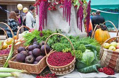 Autumn Harvest Festival Royalty Free Stock Images