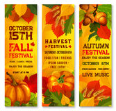 Autumn harvest festival banner with pumpkin, leaf. Autumn harvest festival banner set with orange pumpkin and leaves. Fall season fest poster of yellow leaf Royalty Free Stock Image