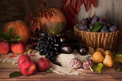 Autumn harvest festive still life on rustic background. royalty free stock photo