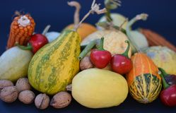 The autumn harvest Finally it has arrived. Finally autumn with september october and november the harvest in the fields and in the woods stock photo