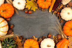 Autumn harvest frame over a slate background royalty free stock photos