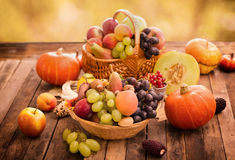 Autumn harvest - fresh autumn fruits Stock Image