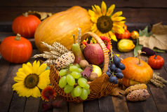 Autumn harvest - fresh fruits Royalty Free Stock Photos
