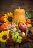 Autumn harvest - fresh fruits Royalty Free Stock Images