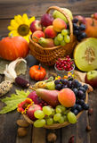 Autumn harvest - fresh fruits Stock Photography