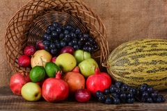 Autumn harvest, fresh fruits Stock Photos