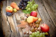Autumn harvest - fresh organic fruit royalty free stock photo