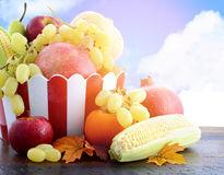 Autumn Harvest fruit and vegetables Royalty Free Stock Photo