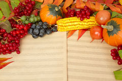 Autumn harvest of fruits and berries Royalty Free Stock Images