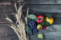 Autumn harvest fruits. On the table Royalty Free Stock Photos