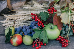 Autumn harvest fruits. On the table Stock Photos