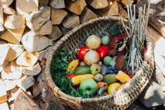 Autumn harvest fruits and vegetables. On the firewood in the wicker basketn Stock Images