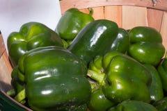 Autumn Harvest - grüner Paprika Lizenzfreie Stockfotografie