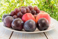 Autumn harvest with grapes, plums, figs, apples. Healthy organic fruit and vegetables. Thanksgiving organic food background Royalty Free Stock Photography