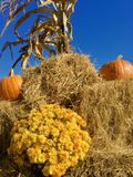 Looking up:  hay and pumpkins Royalty Free Stock Photography