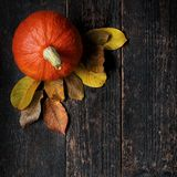 Autumn Harvest and Holiday still life. Happy Thanksgiving Background. Pumpkin and fallen leaves on dark wooden background. Autumn vegetables and seasonal royalty free stock photos