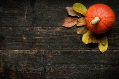 Autumn Harvest and Holiday still life. Happy Thanksgiving Background. Pumpkin and fallen leaves on dark wooden background. stock image