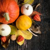 Autumn Harvest and Holiday still life. Happy Thanksgiving Background. Selection of various pumpkins on dark wooden background. Autumn vegetables and seasonal stock images