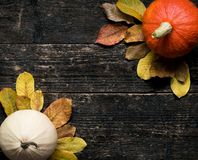 Autumn Harvest and Holiday still life. Happy Thanksgiving Background. Two pumpkins and fallen leaves on dark wooden background. stock image