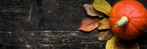 Autumn Harvest and Holiday still life. Happy Thanksgiving Banner. Two pumpkins and fallen leaves on dark wooden background. stock images