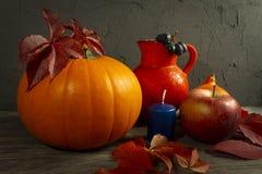 Autumn Harvest and Holiday Thanksgiving still life stock photos
