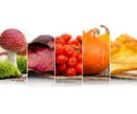 Autumn Harvest Mix Fotografía de archivo libre de regalías
