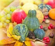Autumn harvest - Organic food Stock Photo