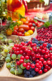 Autumn harvest party. With lots of fresh fruits and vegetables Royalty Free Stock Images