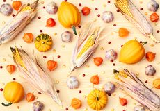 Autumn harvest pattern from pumpkin, corn, garlic, physalis, berries and seeds royalty free stock photography