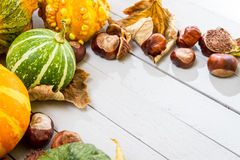 Autumn harvest with pumpkin stock images