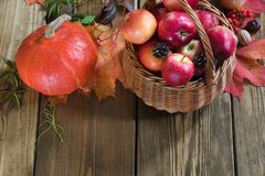 Autumn harvest, pumpkin, apples in basket, colorful autumn leaves on wooden board. Fall, vintage style. Top view. Royalty Free Stock Photos