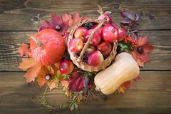 Autumn harvest, pumpkin, apples in basket, colorful autumn leaves on wooden board. Fall, vintage style. Top view. Royalty Free Stock Image