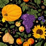 Autumn harvest. stock illustration
