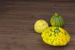 Autumn harvest of pumpkins. Preparing for Halloween. Growing vegetables in a home garden. Place for your text. Stock Photography