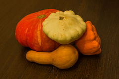 Autumn harvest -  pumpkins and squash. Pumpkin and zucchini varieties. Royalty Free Stock Image