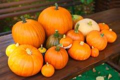 Autumn harvest Royalty Free Stock Photography