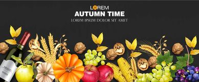 Autumn harvest rich banner Vector realistic. Pumpkin, corn, grapes, wine, walnuts. Detailed 3d design. dark backgrounds. Autumn harvest rich banner Vector stock illustration