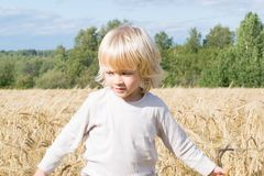 Blond Slavic happy kid boy at a ripe rye wheat field stock image