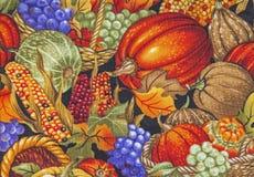 Autumn harvest scene pumpkins corn cobs background Stock Photos
