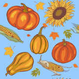 Autumn harvest, seamless Royalty Free Stock Images