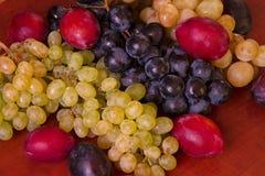 Ukrainian grapes and plums II Stock Photos