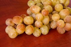 Ukrainian grapes II Stock Images
