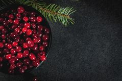 Fresh raw cranberry. Autumn harvest, seasonal berries. Fresh raw cranberries in a black bowl, with Christmas tree branches, on black table, top view copy space Royalty Free Stock Images